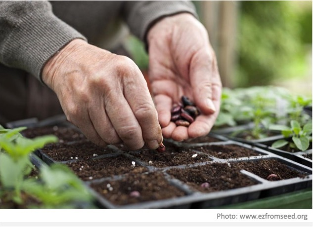 Horticulture 2