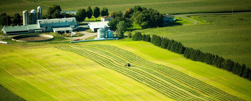 Tracteur dans un champ, à proximité d'une ferme (agriculture à Victoriaville)
