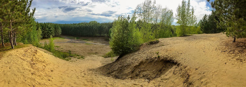 Dunes de sable au parc du Boisé-des-Frères-du-Sacré-Coeur