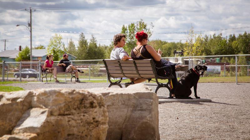 Usagers du parc canin de la rue de l'Acadie