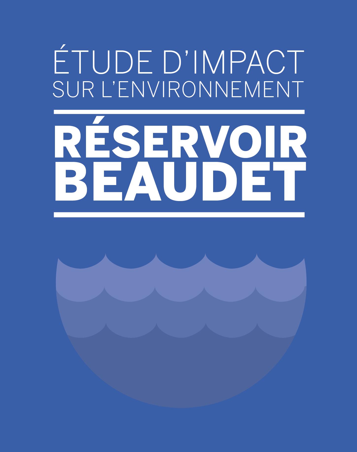 Étude d'impact sur l'environnement en lien avec le projet de restauration du réservoir Beaudet de Victoriaville