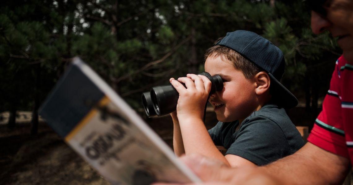 Découvrez le Parc du Boisé-des-Frères-du-Sacré-Coeur, un lieu d'observation et de détente. Crédit photo: Les Maximes