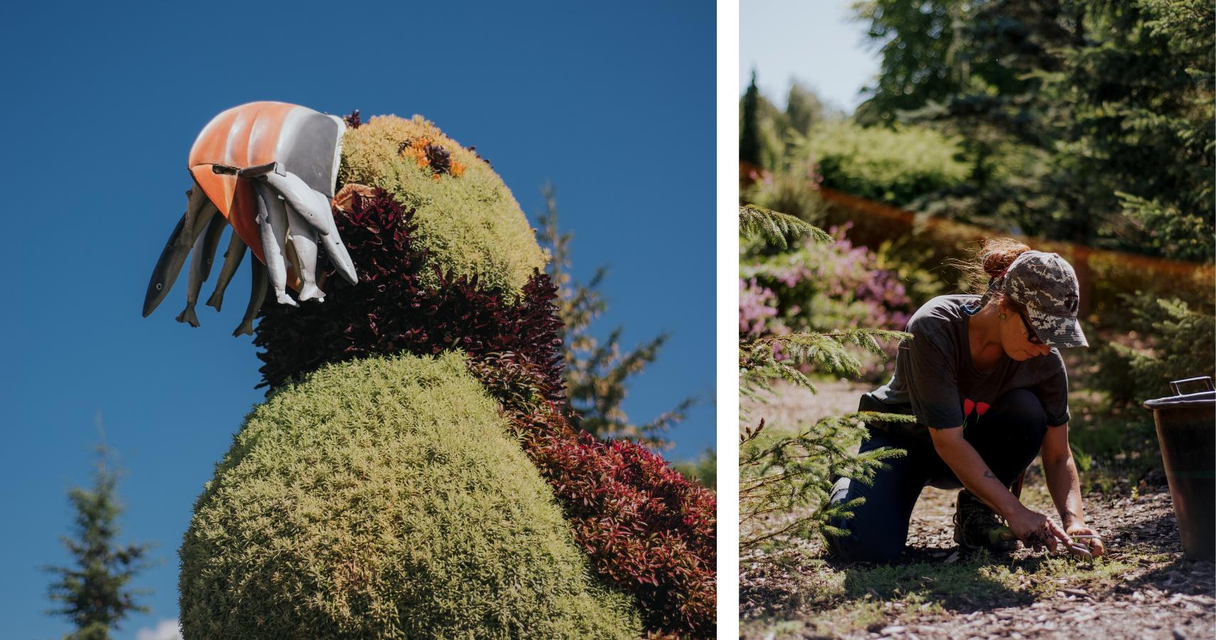 Le parc compte 12 mosaïcultures géantes et une équipe d'horticulteurs passionnés aussi impressionnante -  Crédits photos: Les Maximes