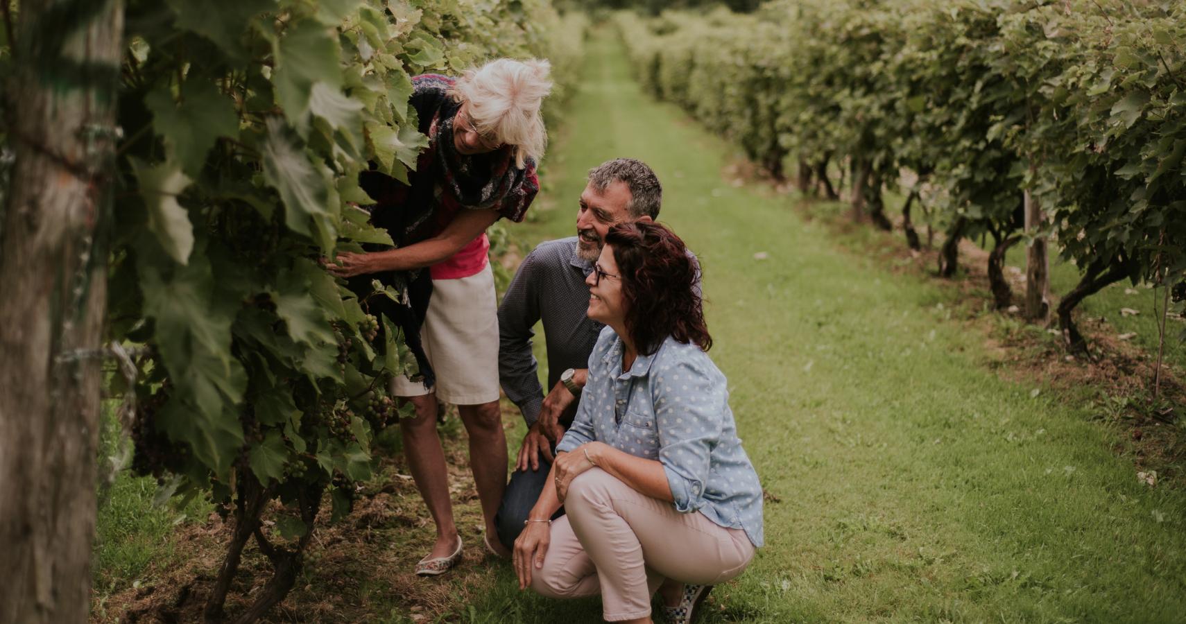 Au vignoble Les Côtes du Gavet, la vigneronne prend toujours plaisir à nous « raconter » ses vignes - Crédit photo: Les Maximes