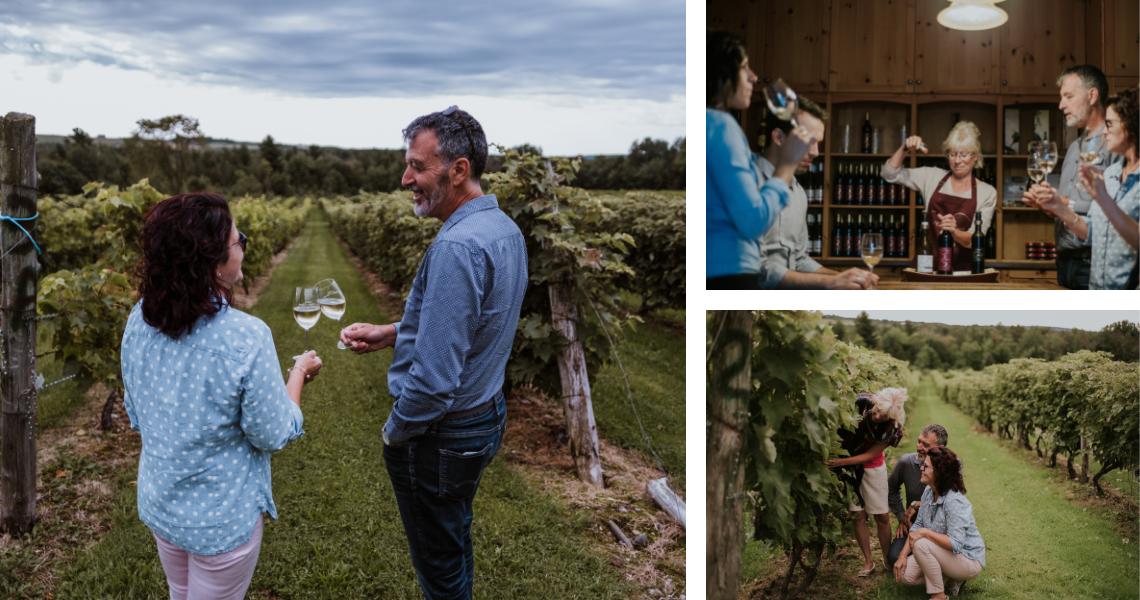 Dégustez des vins gagnants de prix prestigieux et admirez le décor bucolique du Vignoble Les Côtes du Gavet - Crédits photos: Les Maximes