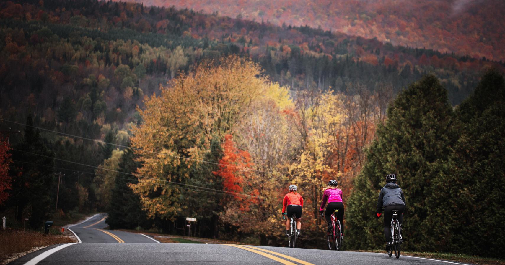 Parcourez nos plus belles routes en automne - Crédit photo: Les Maximes