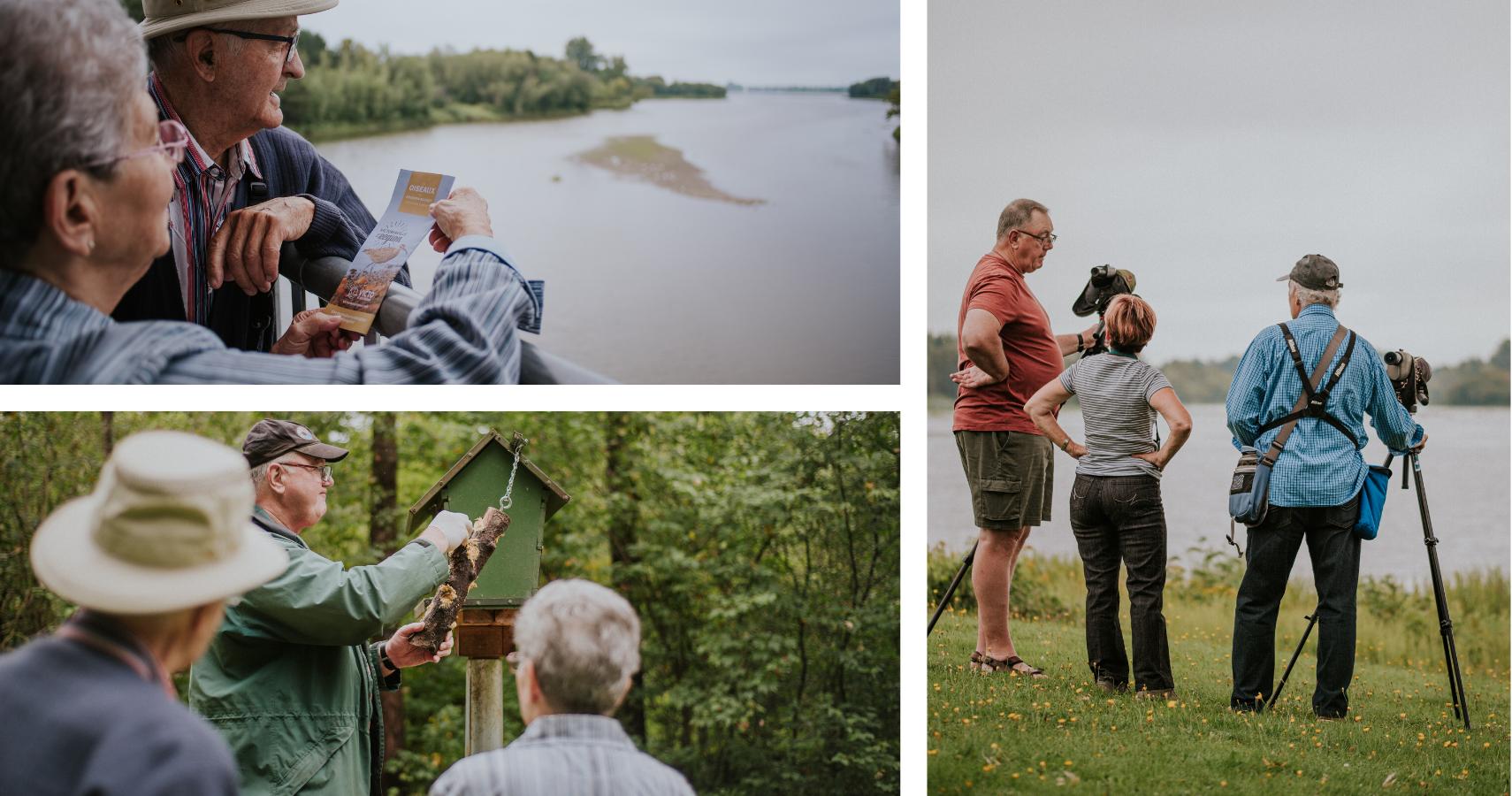 Le Réservoir-Beaudet est une zone importante de conservation des oiseaux (ZICO) - ©Les Maximes