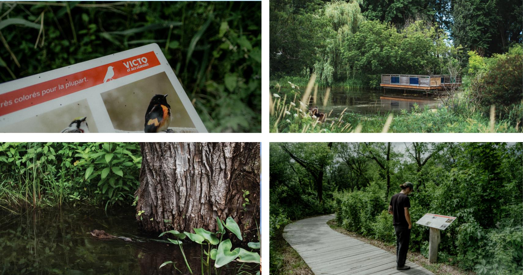 Le parc Terre-de-Jeunes, pour la nature et les magnifiques aménagements qui s'y trouvent - ©Les Maximes