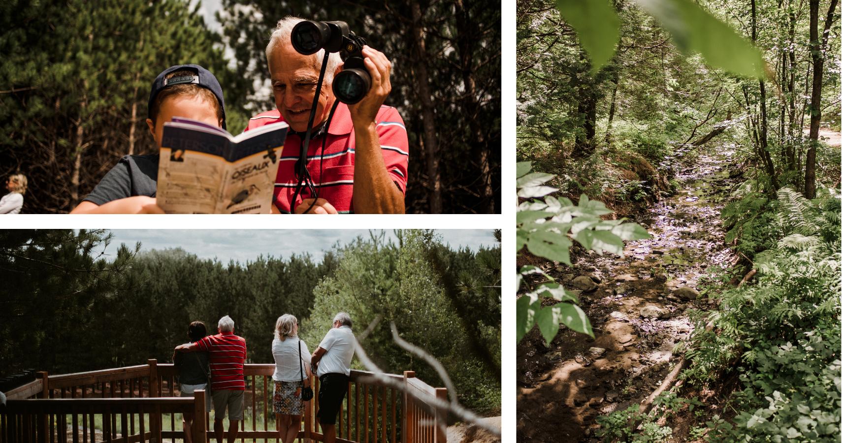 Le Boisé-des-Frères, un parc naturel parfait pour l'observation d'oiseaux - ©Les Maximes