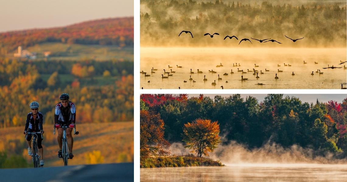La Véloroute des Appalaches et l'observation des oies, deux incontournables en automne - Crédits photos: Matt Charland (gauche), Guy Samson (droite)
