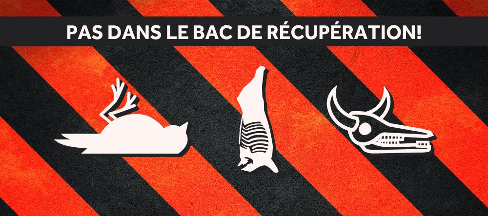 Des animaux morts retrouvés au centre de tri: une situation inquiétante pour les trieurs
