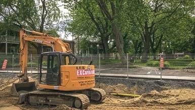 Un arbre du parc Victoria récupéré en mobilier urbain