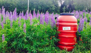 Barils récupérateurs d'eau de pluie et composteurs domestiques à prix modique