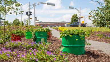 Victoriaville récolte 4 fleurons et le prix du meilleur projet en agriculture urbaine