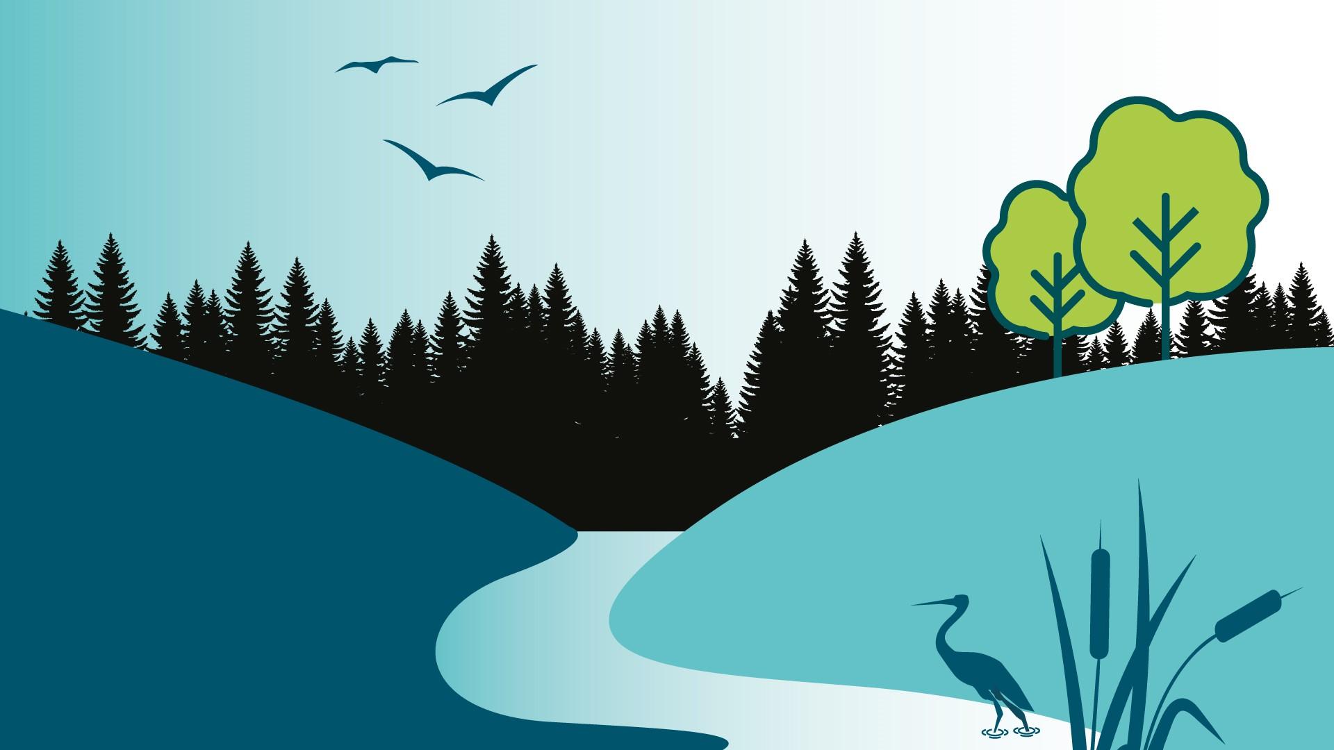 Appel à la mobilisation pour la conservation des milieux humides et hydriques au Centre-du-Québec